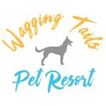 Wagging Tails Pet Resort 💙